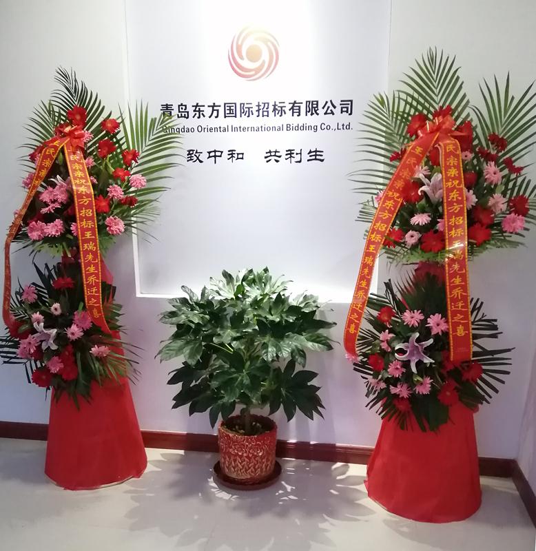热烈祝贺青岛东方国际招标有限公司喜迁新址